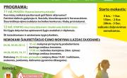 zygis_klaipedoje.png